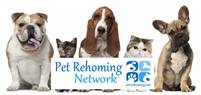 Pet Rehoming Services Deborah Moore